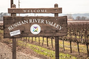 6-Hours Customized Private RUSSIAN RIVER Valley Wine Tour From San Francisc...