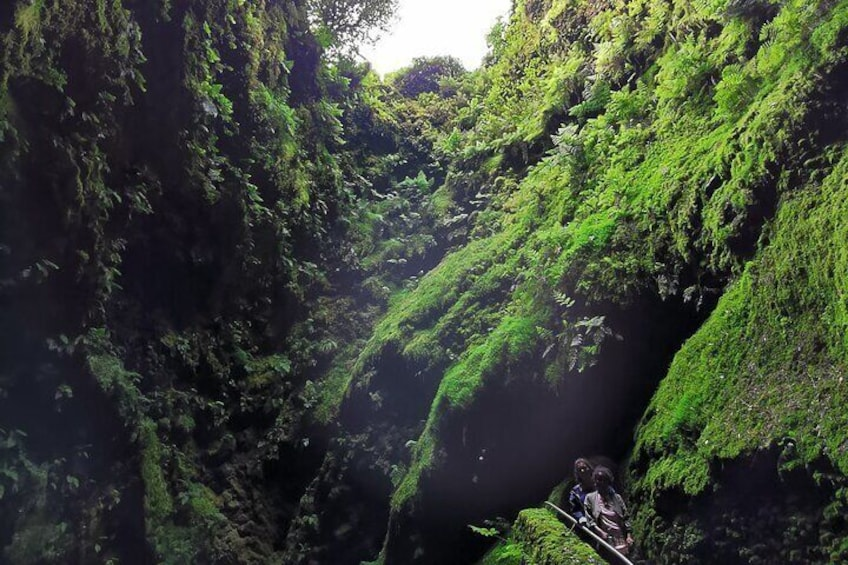 The Caves Tour in Terceira Island (half day)