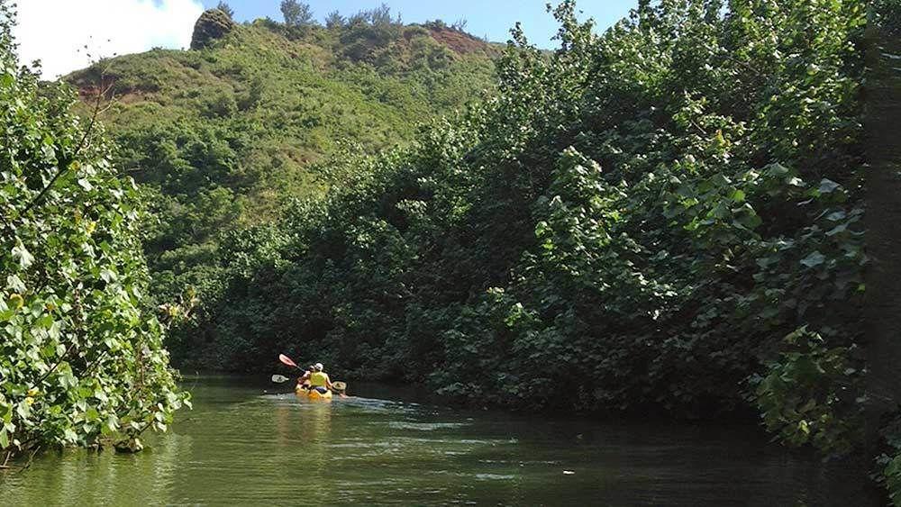 Kayakers traveling down waterways in Kauai