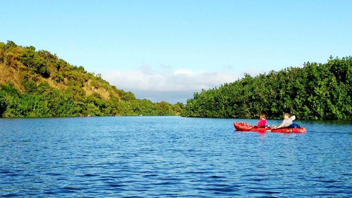 Kayakers paddling along smooth waters in Kauai