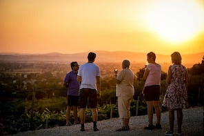 Open-air Wine Tasting with Panoramic View