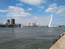 Private tour to The Hague, Delft and Rotterdam