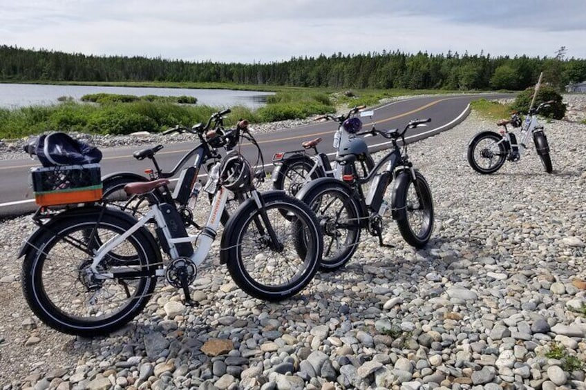 A Rad Power Ebike party at the Seawall.