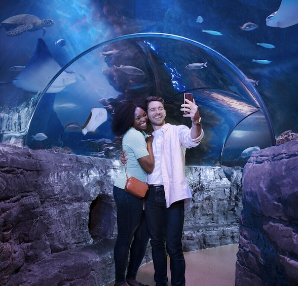 Carregar foto 2 de 10. Merlin's Magical London Pass: 5 Attractions inc. London Eye, Madame Tussauds & SEA LIFE