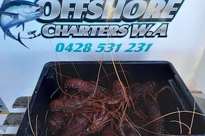Lobster Fishing Tour at Geraldton