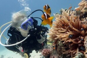 Maafushi: Discover Scuba Diving in Maldives (for Beginners)