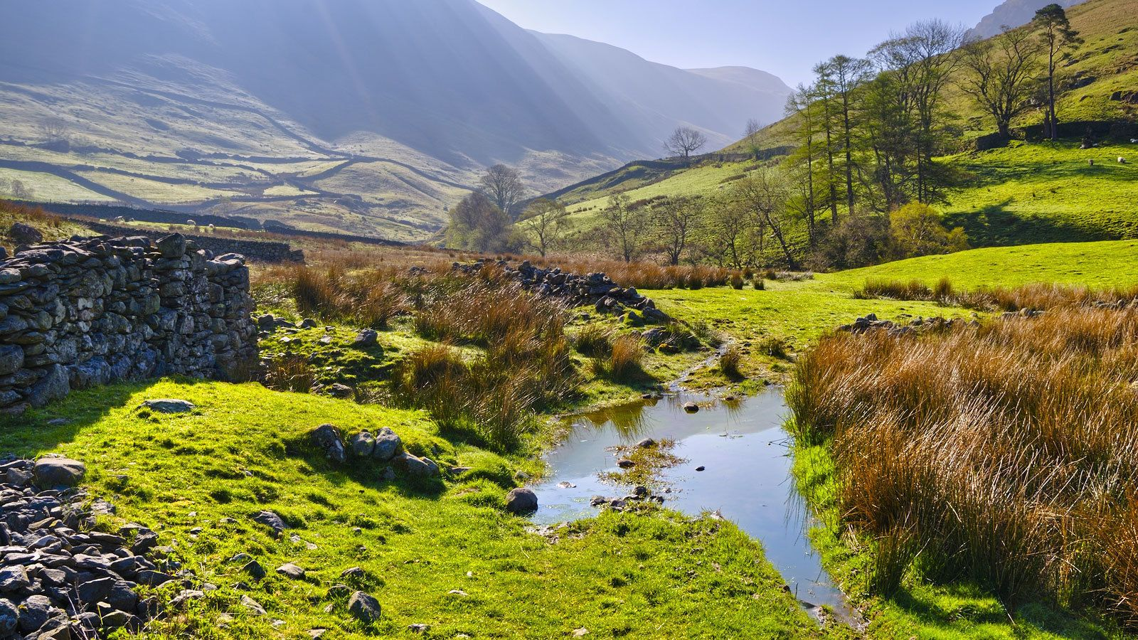 Green pastures and water on the Lake District tour