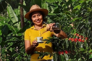 [Online Experience] Explore the Coffee ProcessFrom Tree to Cup