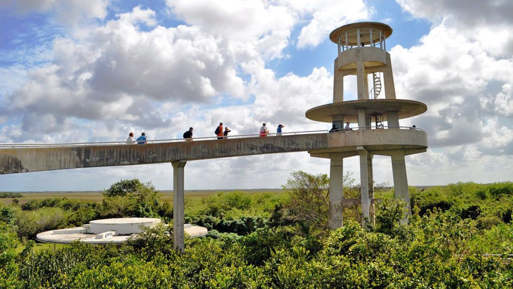 group walking up to an observatory in Miami