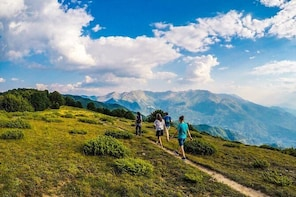 Private 10 Kms Hiking Tour near Metsovo