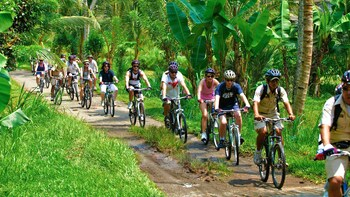 Kintamani Mountain Biking Tour with Lunch