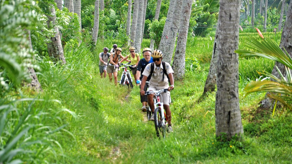 Show item 2 of 5. cyclists riding bikes through grass in Bali