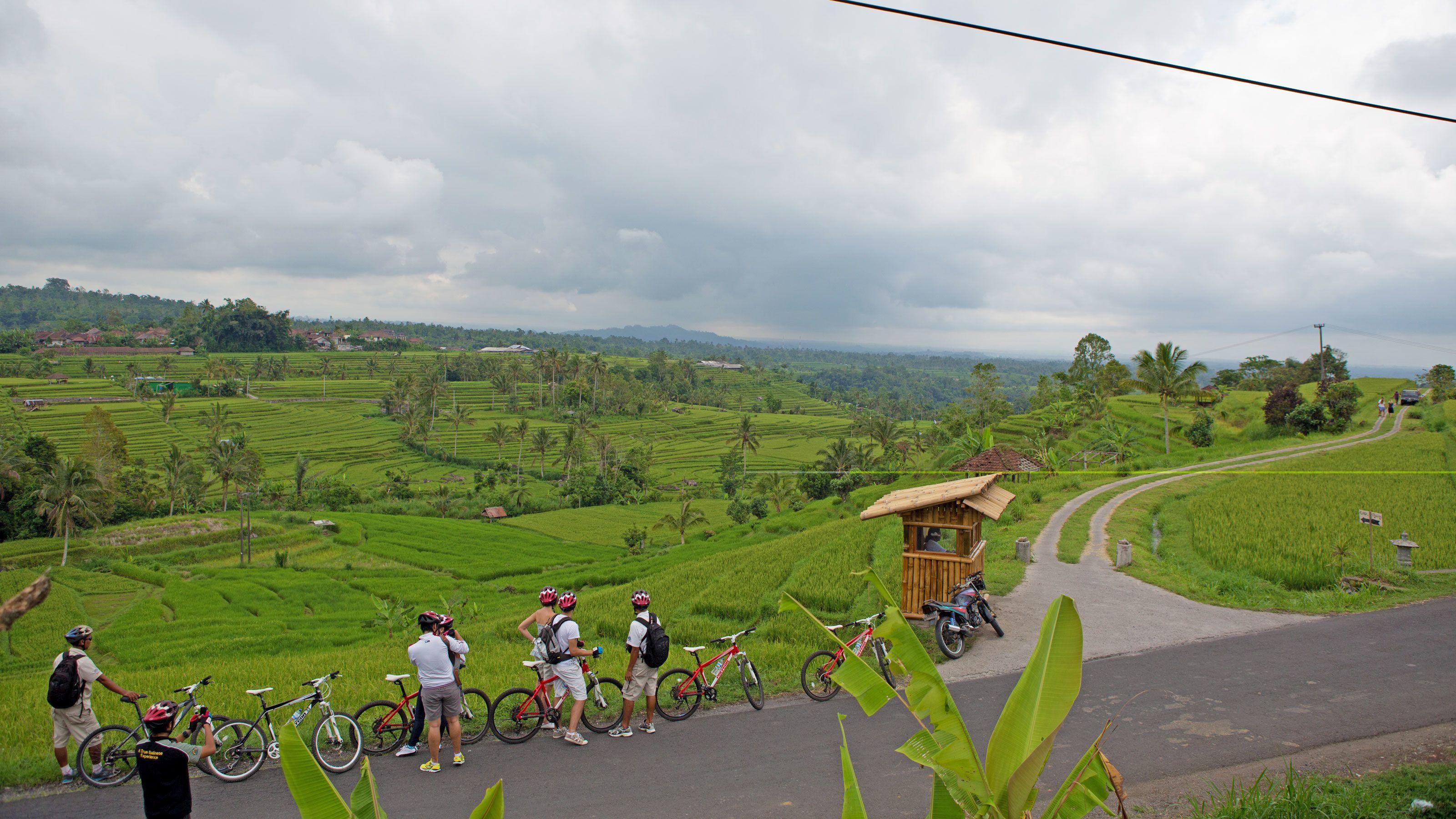 cyclists taking a break along a narrow road in Bali
