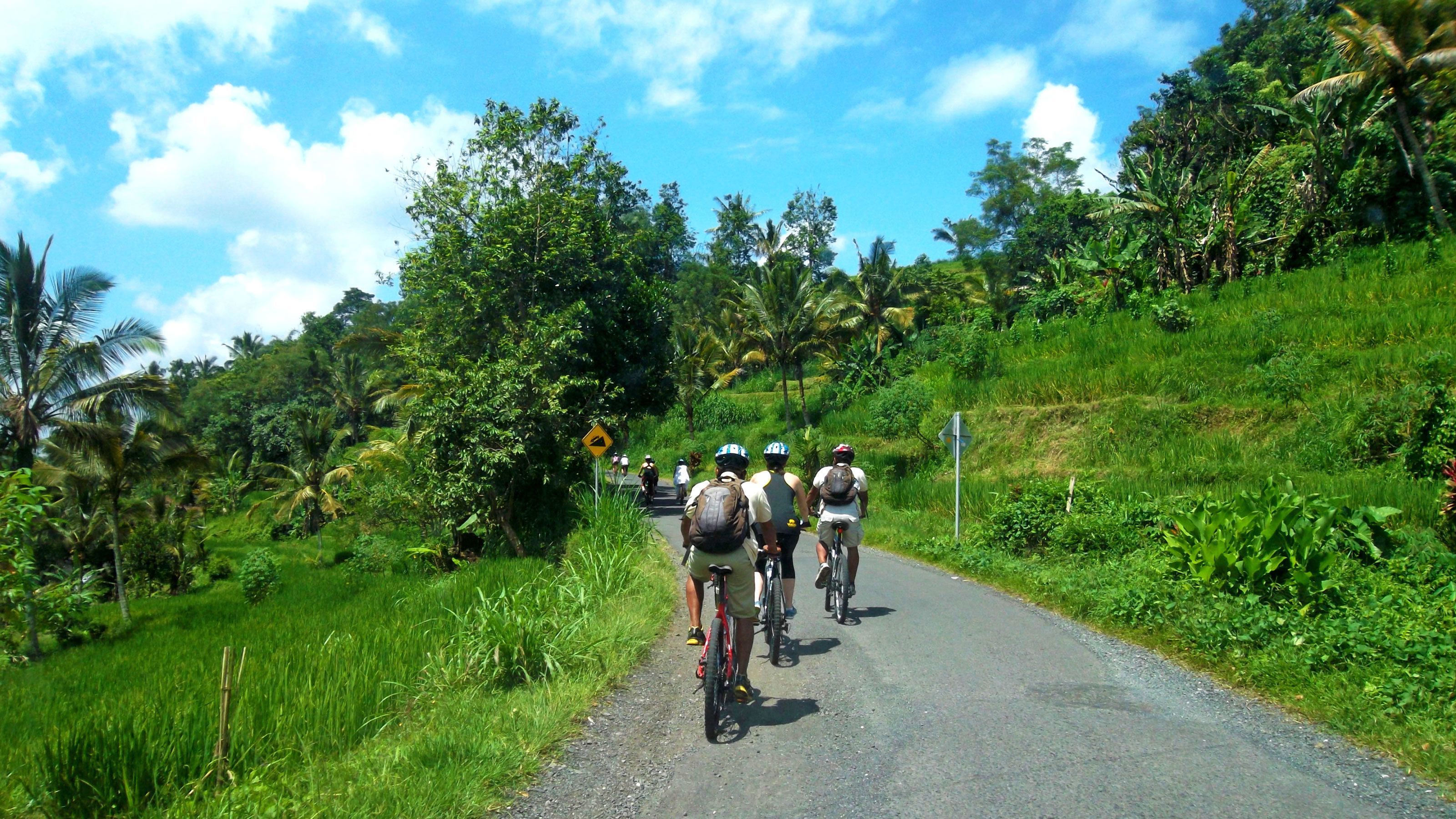cyclists biking on a narrow paved road in Bali
