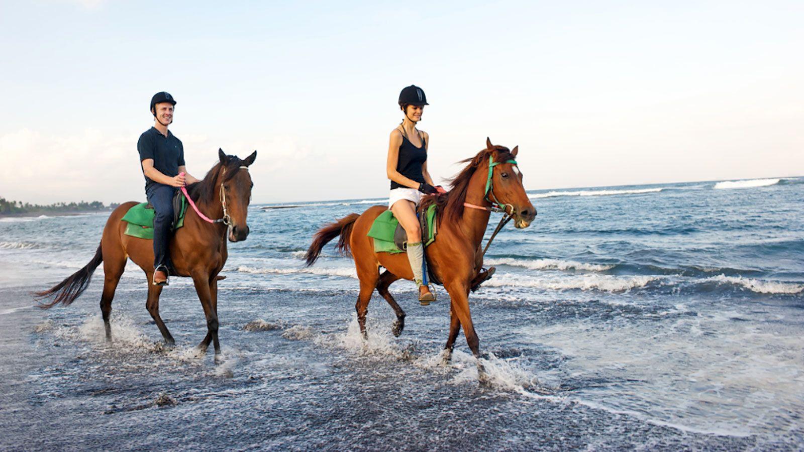 Horseback Riding Excursion in Saba Bay