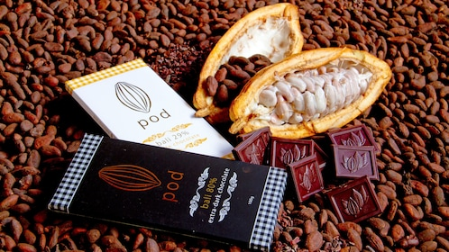 Chocolate bars and cocoa pods