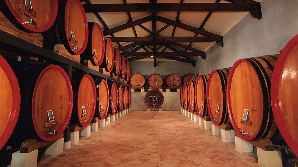 big barrels inside a cellar in Provence