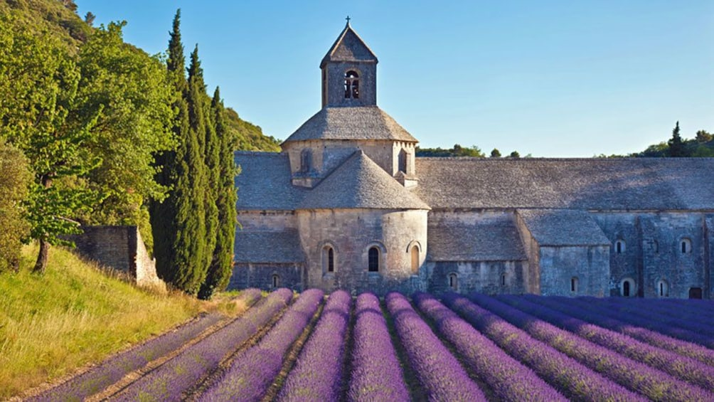 Charger l'élément 1 sur 6. lavender field outside of an old church building in Provence