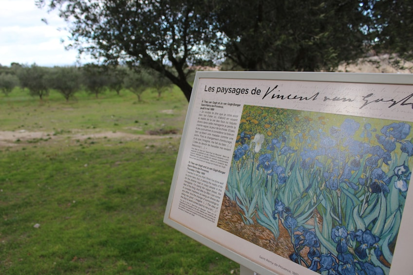 Charger l'élément 6 sur 6. On the Trail of Van Gogh