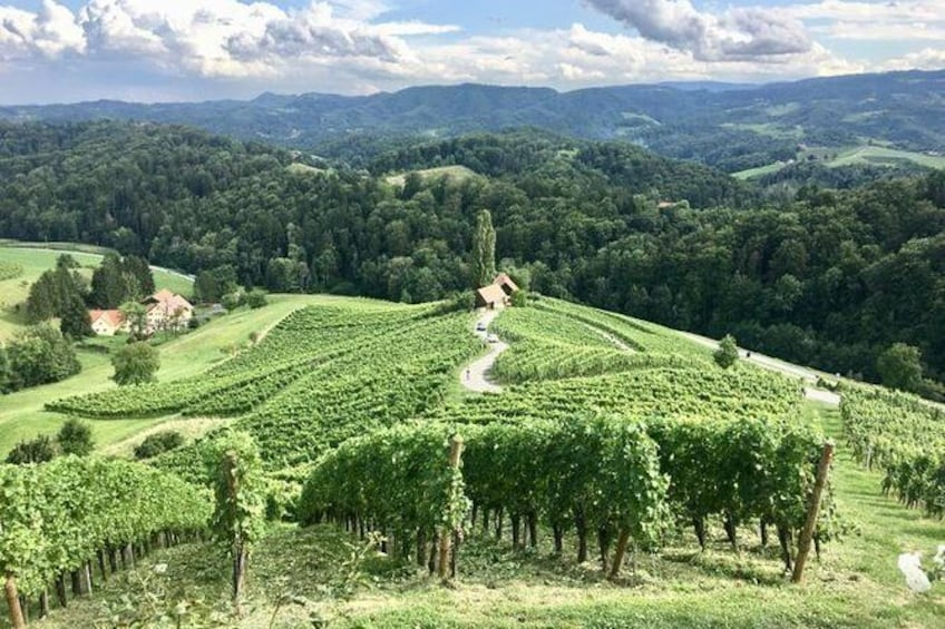 Show item 2 of 6. Full-Day Private Tour from Zagreb to Slovenian Styria