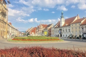 Full-Day Private Tour from Zagreb to Slovenian Styria