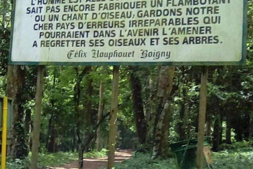 The Banco National Park and Bingerville tour in Abidjan