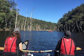 Canoes, Cool Climate Wines & Canapés - Kangaroo Valley