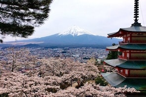 Tour to Mt. Fuji Photo Spots and Tea Ceremony Experience