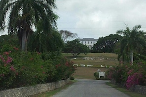 Rosehall Great House and Montego Bay City Tour from Falmouth