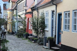 The best of Aalborg walking tour