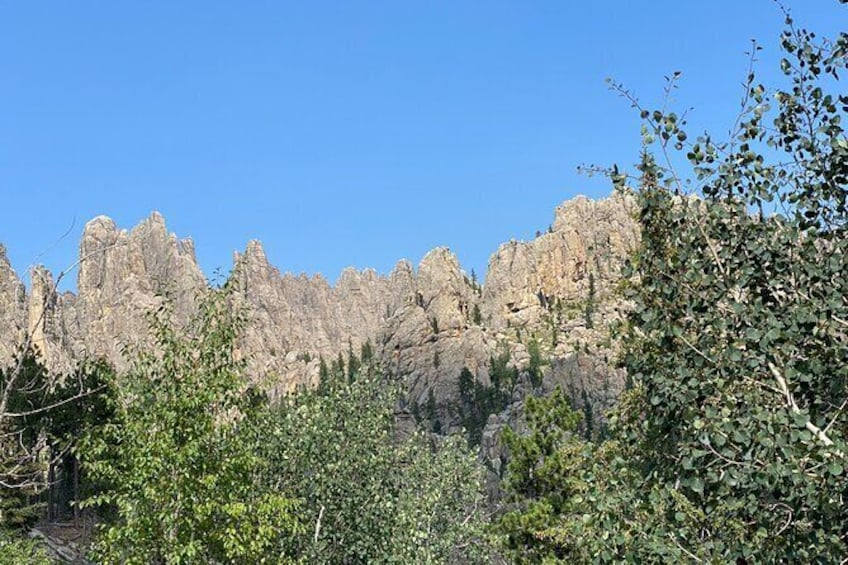 Show item 3 of 10. The Black Hills, Mt. Rushmore, Custer State Park VIP Day Tour from Rapid City