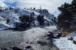 Private Winter VIP Jeep Safari to North Yellowstone Day Trip from Big Sky