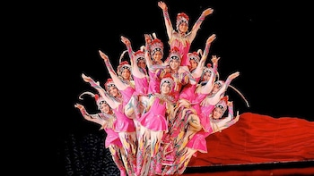 Chinese Acrobatic Show with Optional Hotel Pick-up