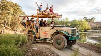 African Savanna Excursion