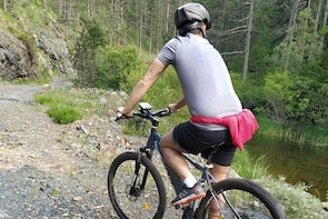 Half-Day E-Mountain Bike Adventure at Aoos Lake Metsovo