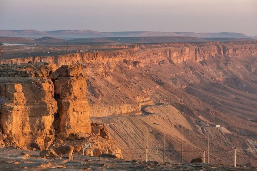 Show item 3 of 3. The best of Ramon Crater walking tour