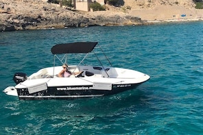 Rent a Bayliner Element E5 without a licence
