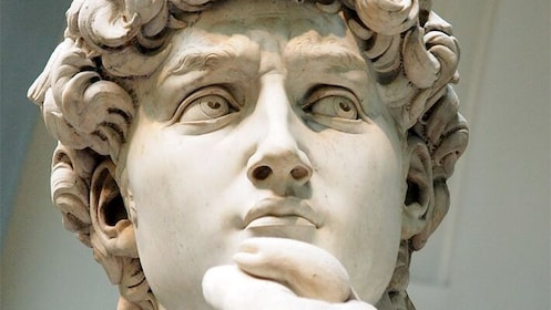 Headshot of the David Sculpture by Michelangelo sculpture at the Accademia Gallery in Italy