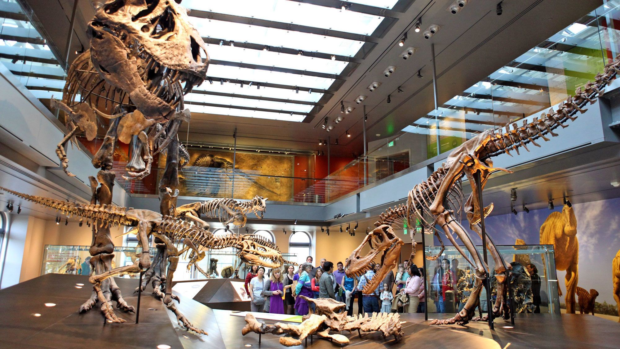 Los Angeles Natural History Museum Tickets