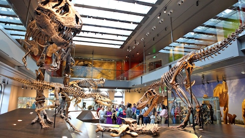 crowd standing around dinosaur fossils at the Natural History Museum in Los Angeles