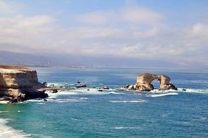 The Best of Antofagasta Walking Tour