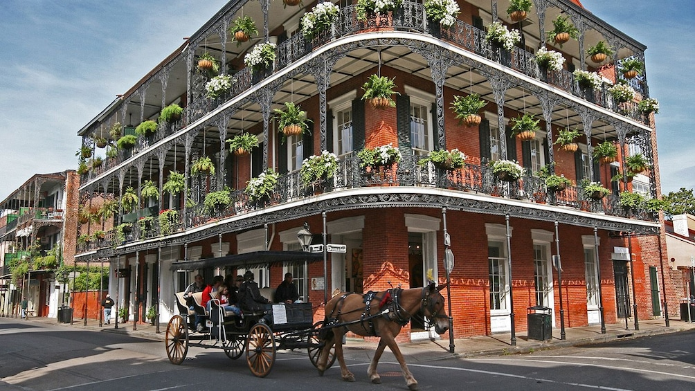 New Orleans Pass: 25+ Attractions in 1 Pass