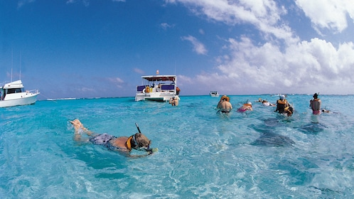 Snorkeling in shallow waters with stingrays in Grand Cayman