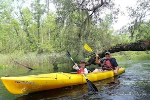 Guided Family Friendly Kayak Tour: Experience Old Florida