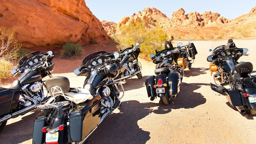 a small fleet of Harley Davidson motorcycles parked in the Las Vegas desert