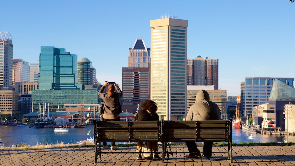 Show item 1 of 5. Group enjoying a view of the city from Federal Hill in Baltimore