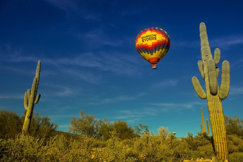 Show item 10 of 10. Sonoran Desert Sunset Hot Air Balloon Ride