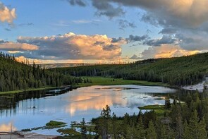 VIP Yellowstone National Park Tour with Art or Photography Lessons