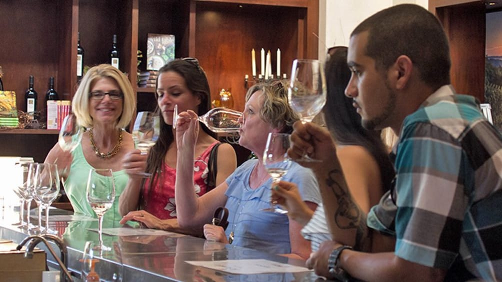 People sipping wine at bar in california