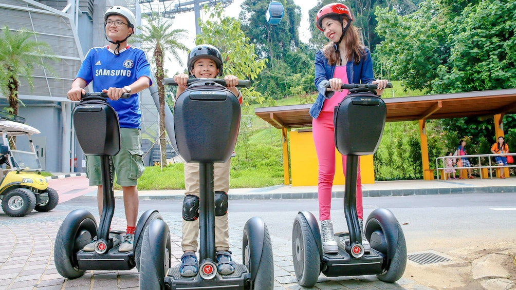 Show item 5 of 5. Family on relaxing segway tour in Singapore